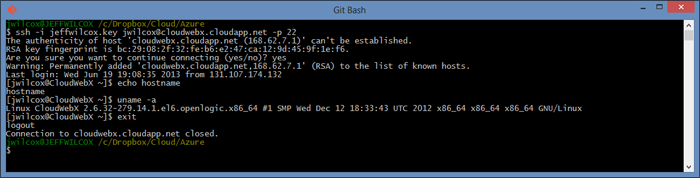Using Git Bash and its built-in openssl to SSH into your new VM.